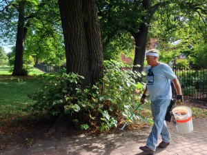 John, Seton Hill's park steward, is cleaning up St Mary's Park.
